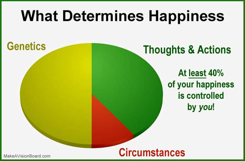 What Determines Happiness - https://www.makeavisionboard.com/science-of-happiness/