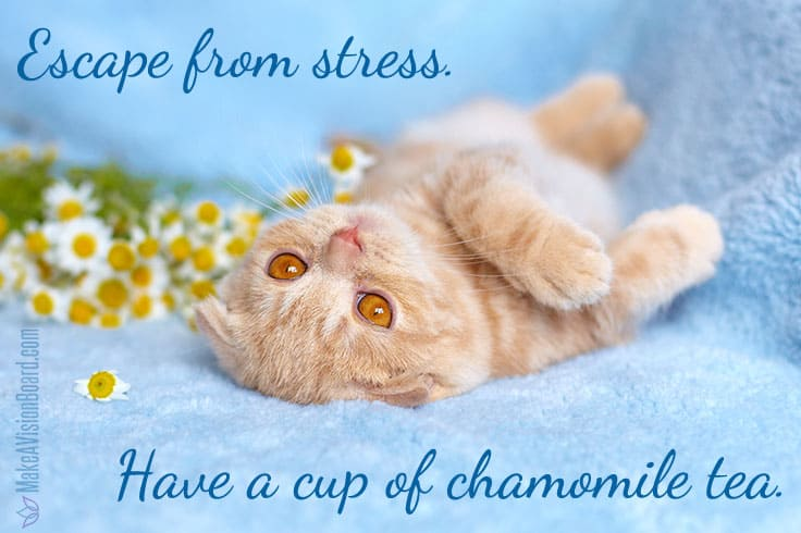 Good Mood Food - stress relief from chamomile tea https://www.makeavisionboard.com